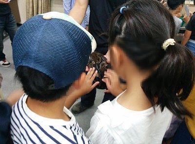 小さな子供もニシキヘビを触ってる