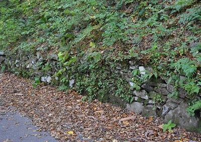 登山道脇の石垣の様子