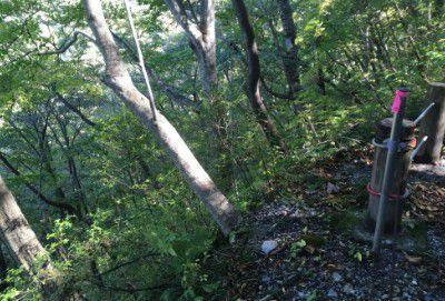 登山道崖下の様子