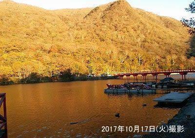 夕日に染まる池と啄木鳥橋