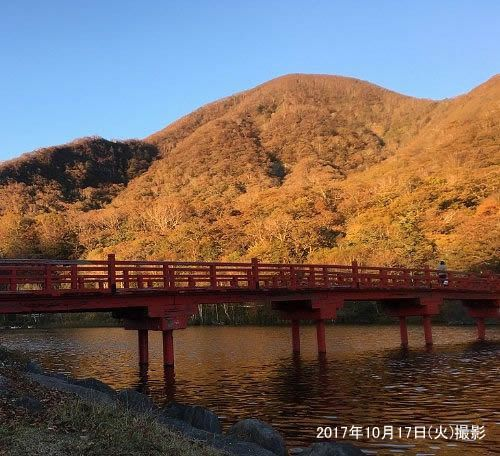 紅葉と啄木鳥橋